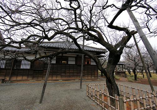 construccion-en-japon-la-casa-tradicional
