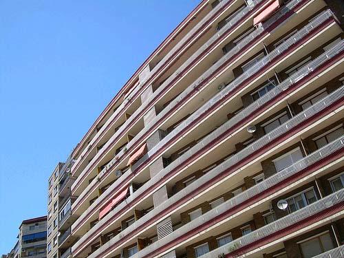 pp-del-ayuntamiento-de-zaragoza-pide-explicaciones-por-la-ubicacin-de-la-unidad-de-montes