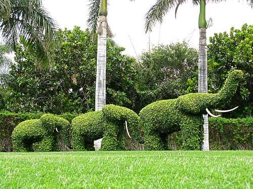 la-ciudad-de-murcia-construira-un-jardin-para-aumentar-el-atractivo-de-un-hotel