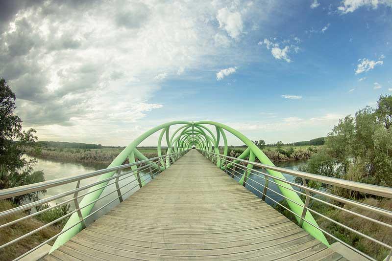 puentecartuja